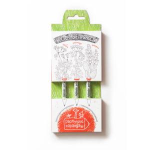 карандаши Восточные пряности