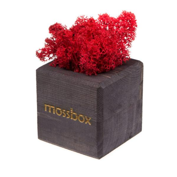 Композиция black red cube
