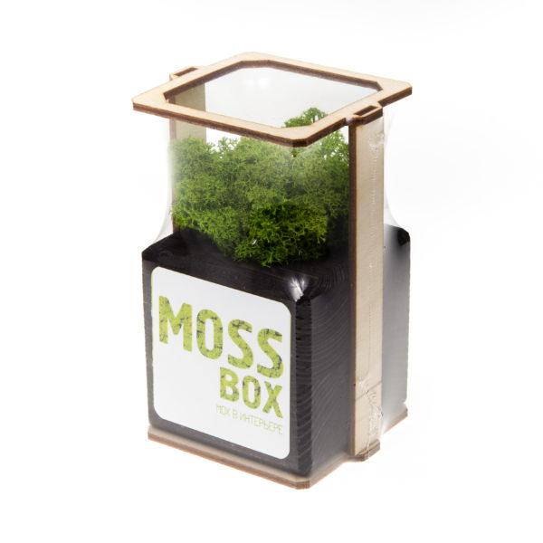 Композиция black green cube