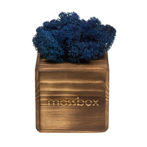 Композиция fire blue cube