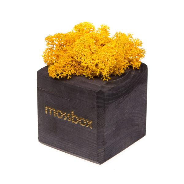 Композиция black yellow cube
