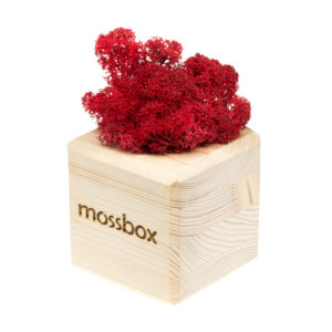 Композиция wooden red cube