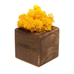 Композиция fire yellow cube