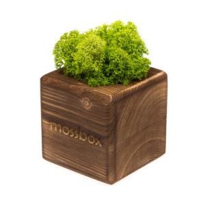 Композиция fire green cube